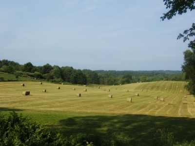 Round bales in the Pond Field