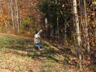 Morgan in Cooper Meadow