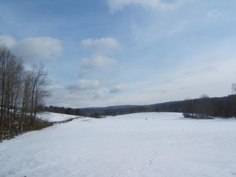 Winter Sledding in PondField