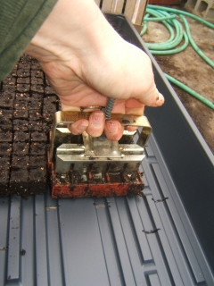 Making Soil Blocks in the Greenhouse